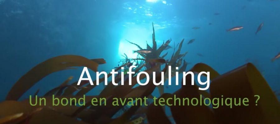 Antifouling et environnement : où en sommes-nous ?